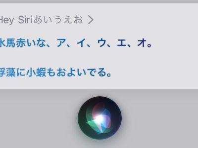 Siriキャプション・話した内容表示
